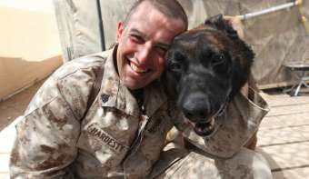 Read more about National K9 Veterans Day