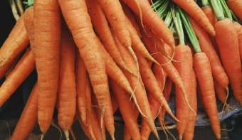 Read more about International Carrot Day