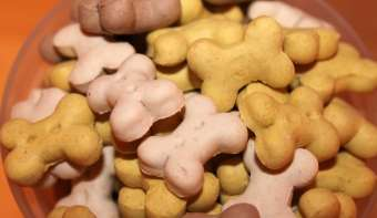 Read more about National Dog Biscuit Day