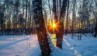 Read more about Winter Solstice