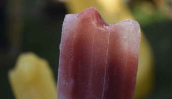 National Blueberry Popsicle Day