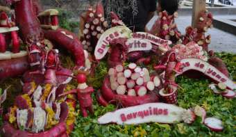 Read more about Night of the Radishes