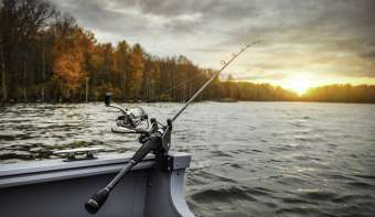 Read more about National Go Fishing Day