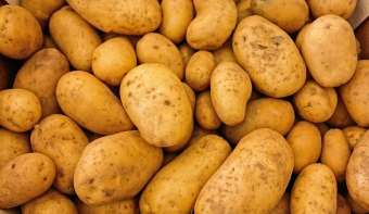 Read more about National Tater Day