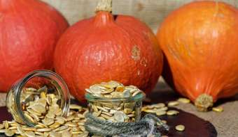 Read more about National Pumpkin Seed Day