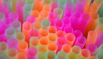 Read more about National Skip the Straw Day