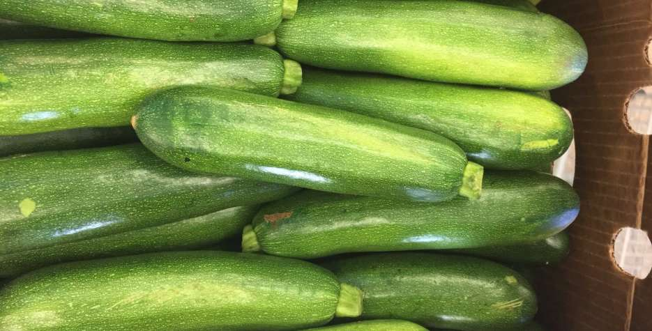 National Sneak Some Zucchini Into Your Neighbor's Porch Day in USA in 2021