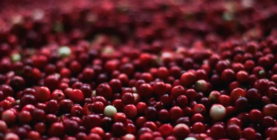 National Eat a Cranberry Day around the world in 2020