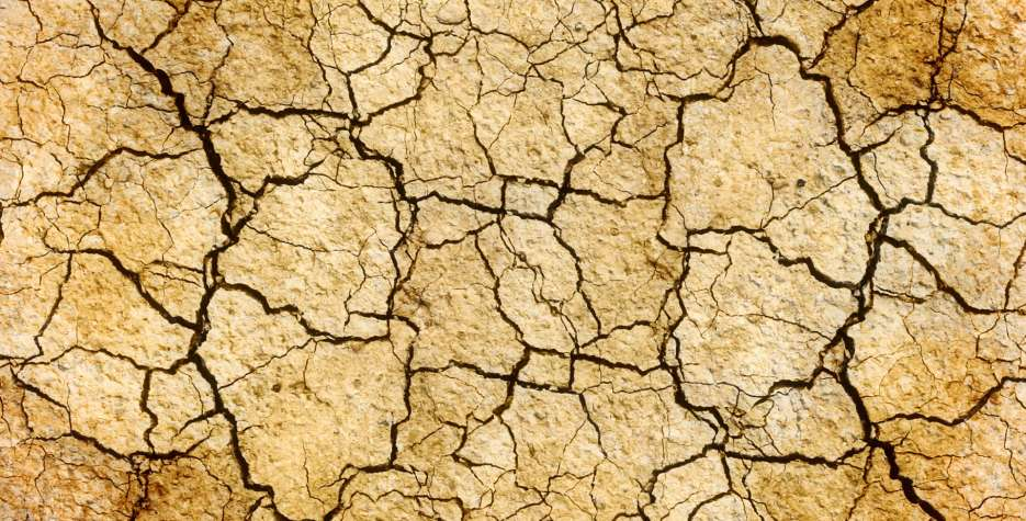 Desertification Day in United Nations in 2021