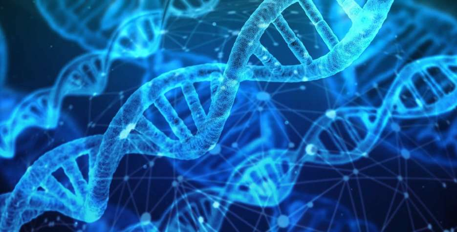 National DNA Day in USA in 2021