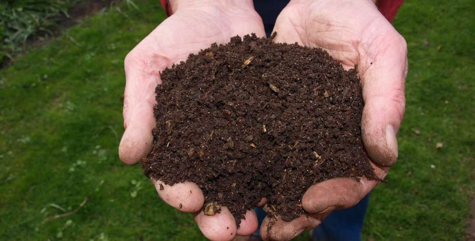 National Learn About Composting Day around the world in 2021