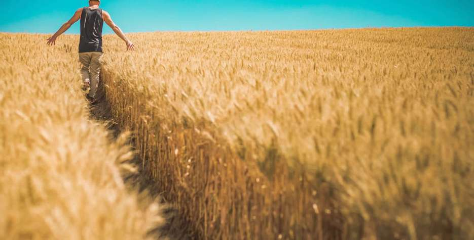 Whole Grains Month in USA in 2021