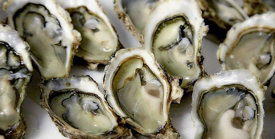 National Oyster Day in USA in 2021