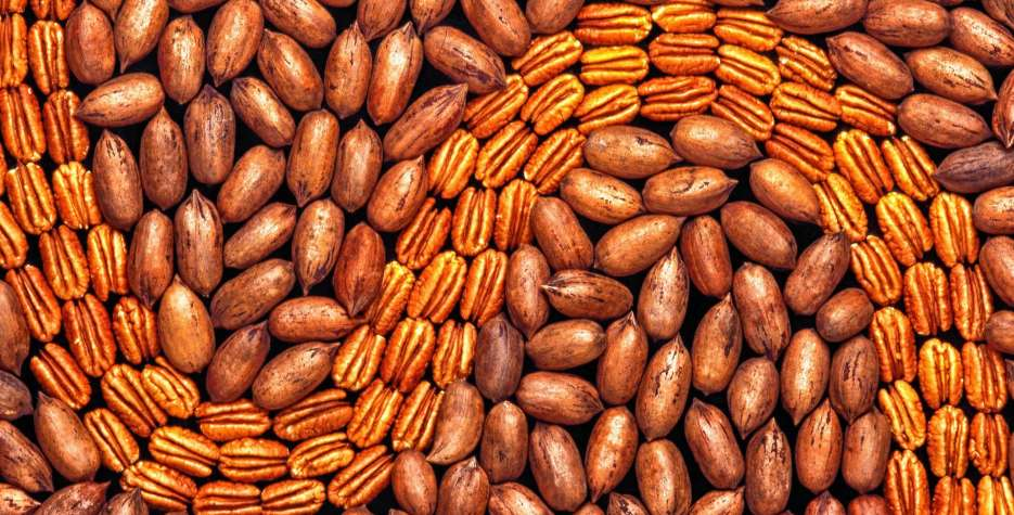 National Pecan Day around the world in 2021