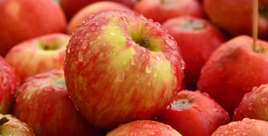 International Eat An Apple Day in USA in 2021
