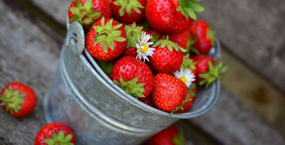 National Pick Strawberries Day in USA in 2021