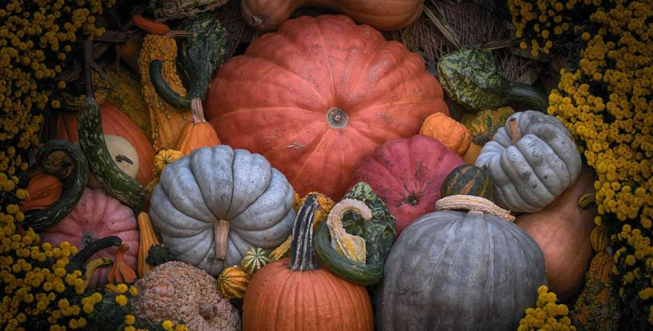 Traditionally, this holiday celebrates the giving of thanks for the autumn harvest